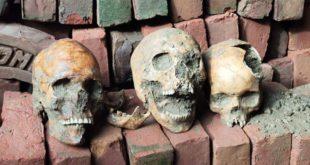 Skulls and skeleton parts found in Nadia's Nakashipara during digging, DM orders to re-dig.